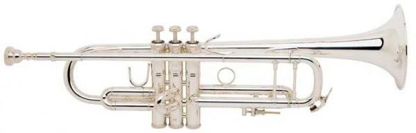 Bach 180 S-43 ML Stradivarius versilbert